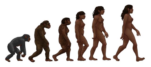 640px286_-Female_human_evolution_2